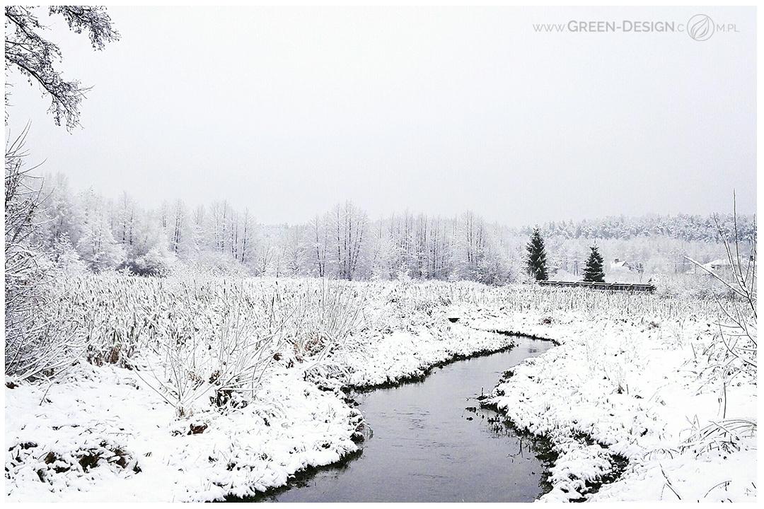 green-design-blog_czekolada-1