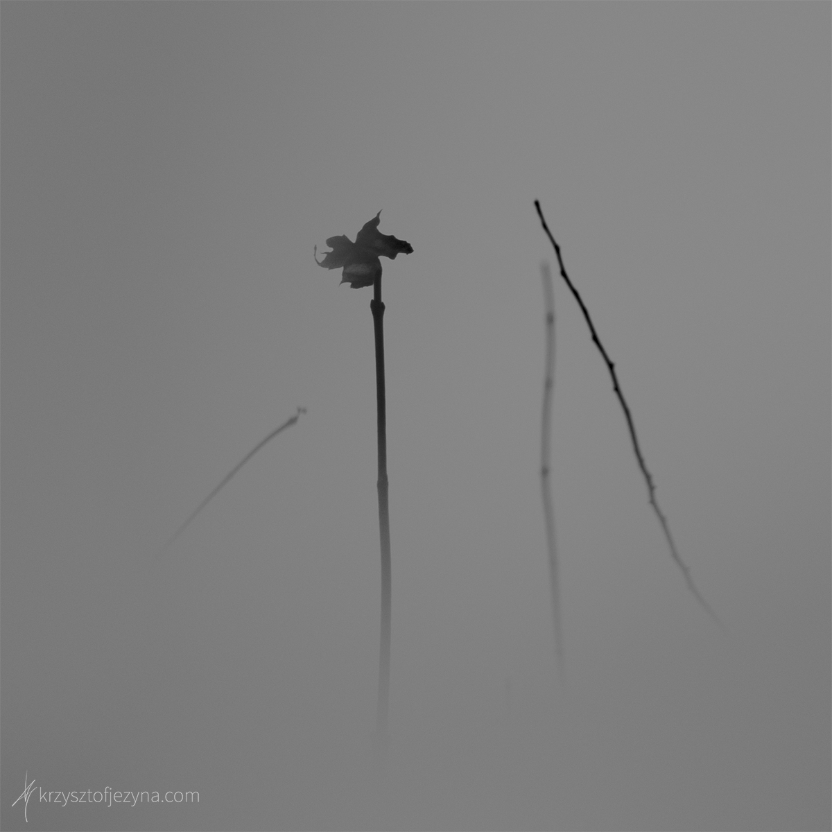 Fotografia minimalistyczna Krzysztof Jeżyna 01