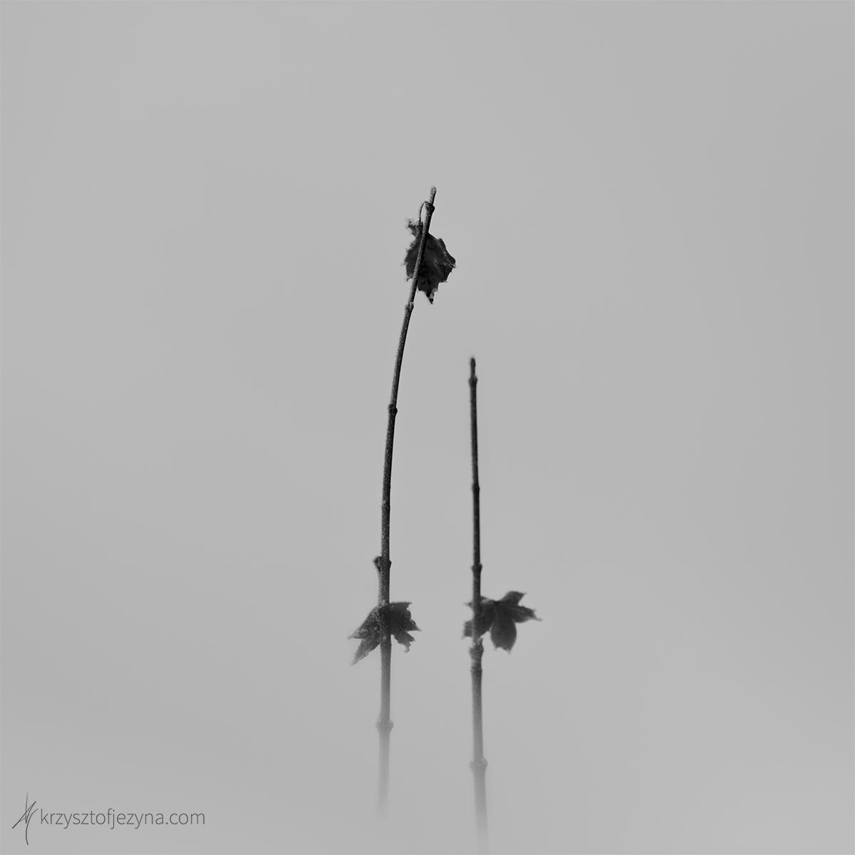 Fotografia minimalistyczna Krzysztof Jeżyna 08