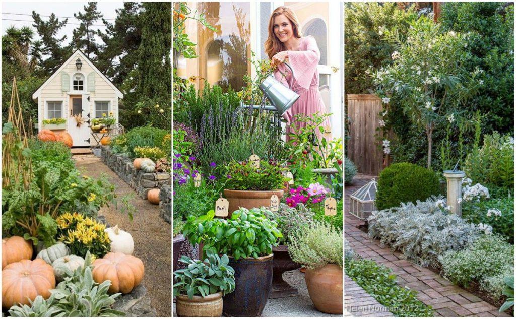 kobieta w ogrodzie warzywnym