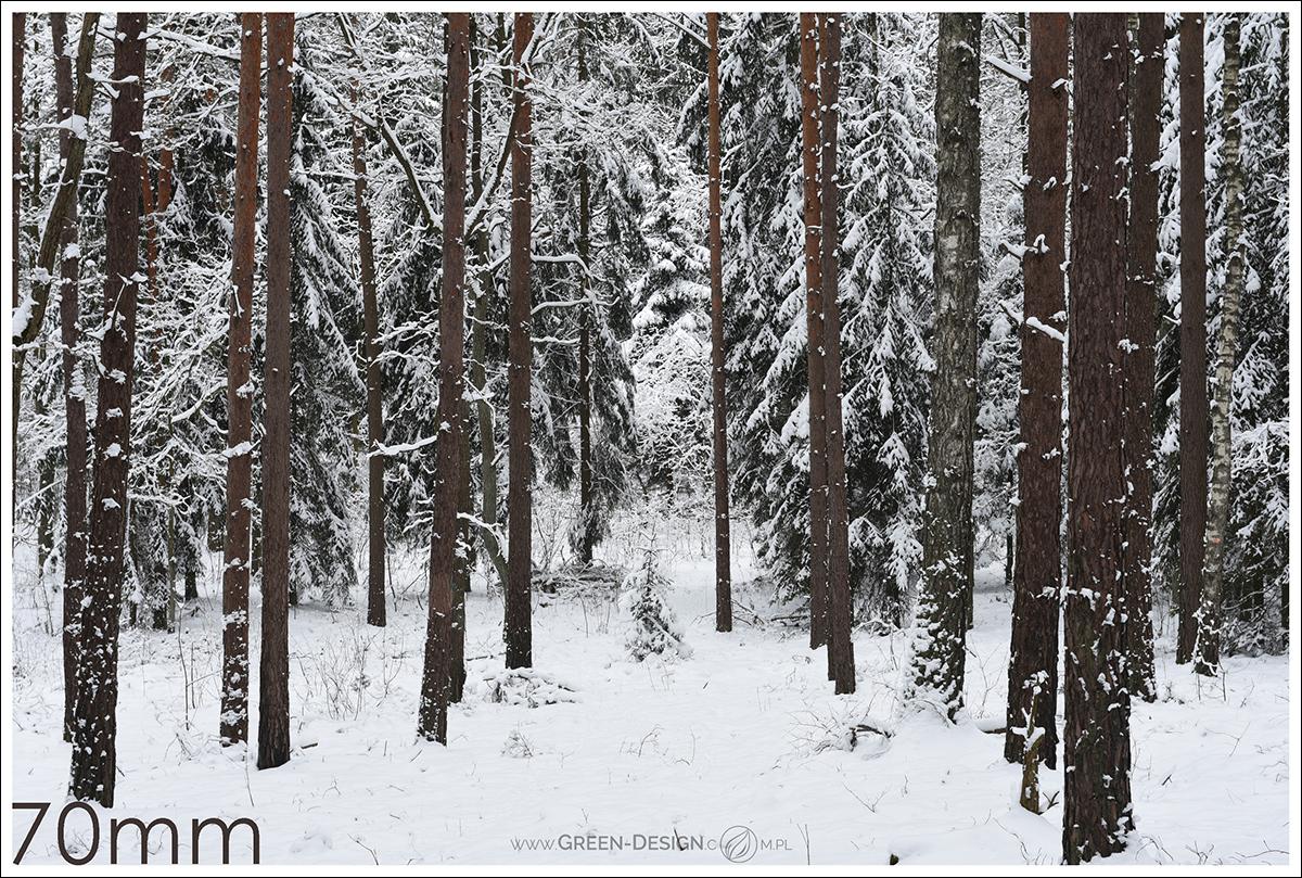 Podstawy w fotografii krajobrazowej - trochę o kompozycji i nie tylko