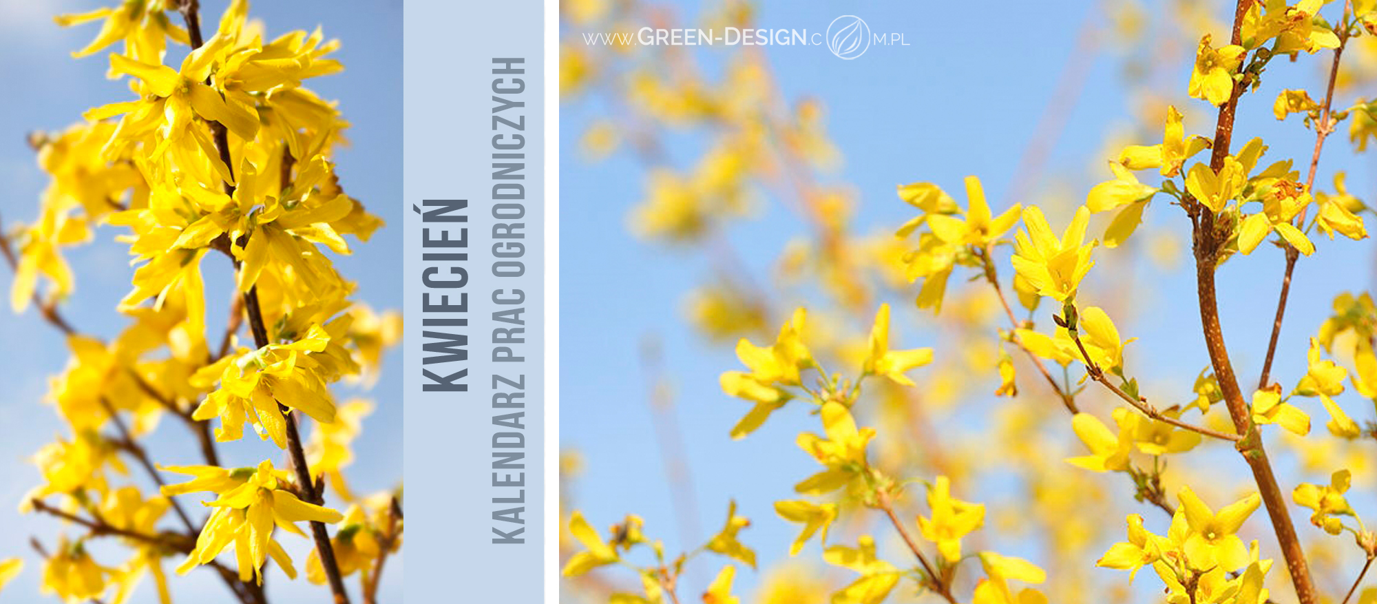 Green-Design-Blog_kwiecien_cover-photo